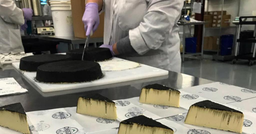 Vegan cheese processing