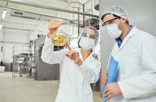 People working in food processing sector