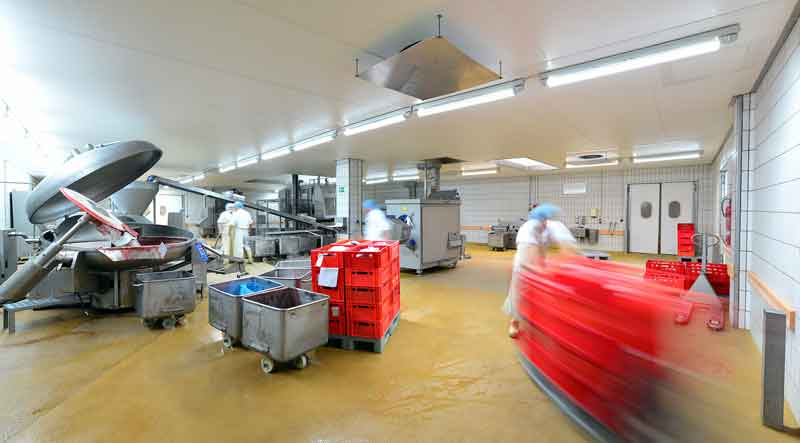 sanitation workers in a food processing plant